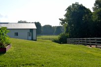 30 acres of pastures and dry lots along with 3 large barns - small